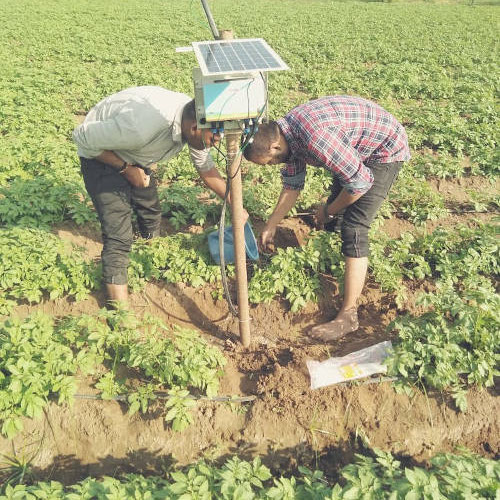 Use of Soil Moisture Sensors gains momentum